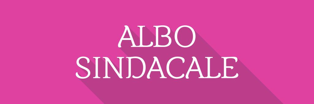 Albo Sindacale 900x300